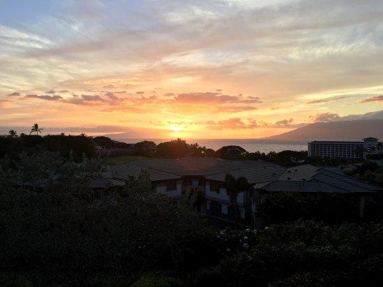Ho'olei at Grand Wailea: photo3.jpg