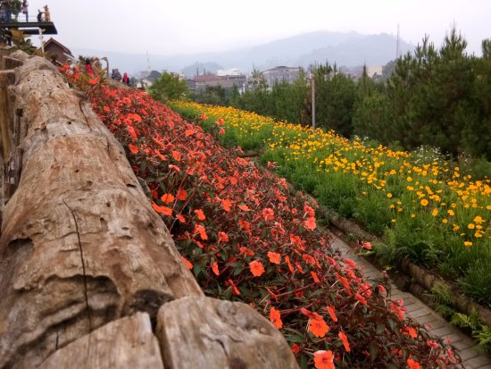 Rainbow Garden Lembang Picture Of Rainbow Garden Lembang Tripadvisor