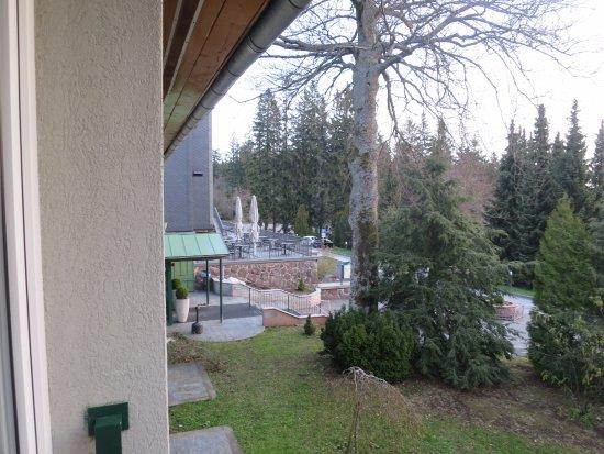 Berg- und Jagdhotel Gabelbach: Fensterausblick (morgens)