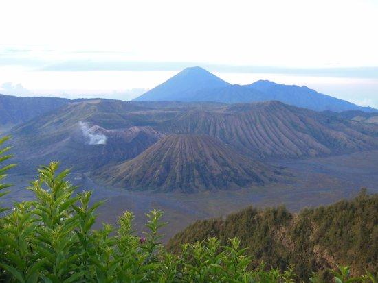 Smartine Indonesia Travel