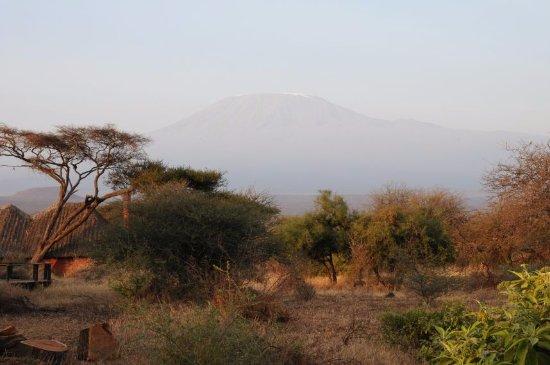 Tawi Lodge: Blick auf den Kilimandscharo von unserem Cottage