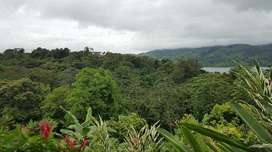 Nuevo Arenal, Costa Rica: 20170701_115344_large.jpg