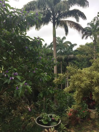 Hunte's Gardens: beautiful gardens