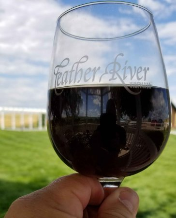 Feather River Vineyard