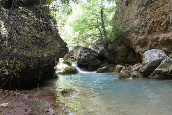Tierraventura Ecoturismo  Day Tours: photo1.jpg
