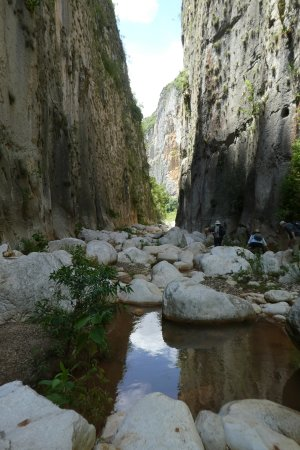 Tierraventura Ecoturismo  Day Tours: photo2.jpg