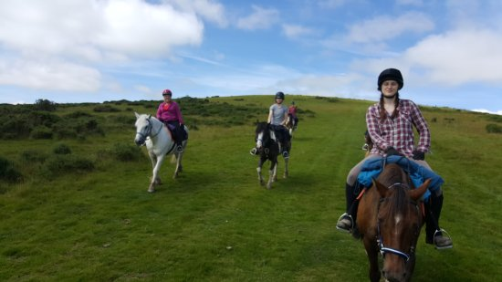 ‪Freerein Riding Holidays‬