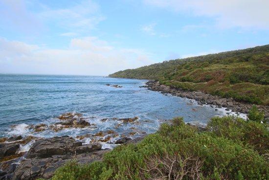 Bluff, New Zealand: Le sentier