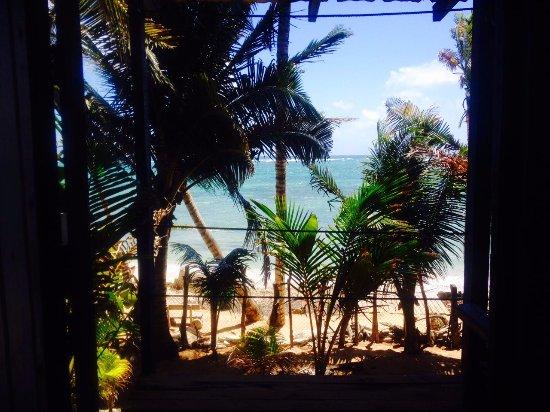 Casa Iguana: Blick von unserer Terrasse