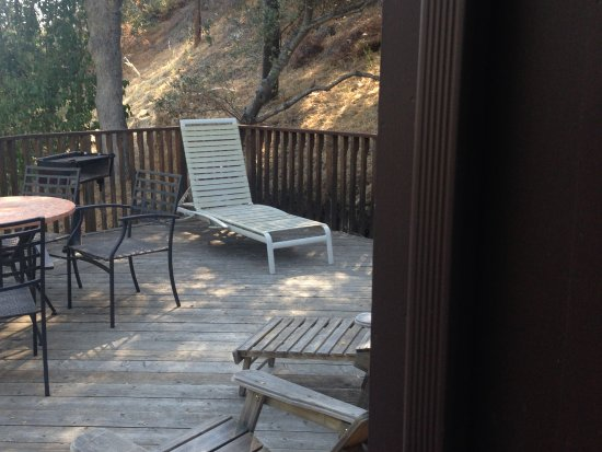 Buckeye Tree Lodge: Private deck with patio just off the room.