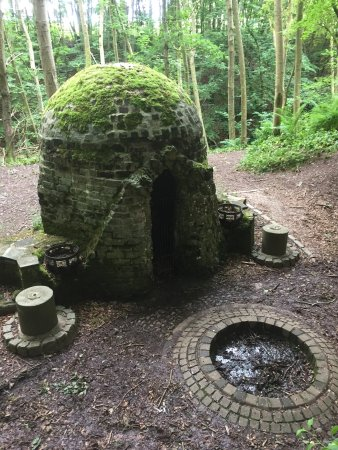 Stonehaven, UK: photo6.jpg