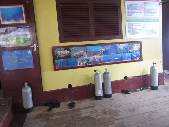 Praslin Island, Seychelles: Octopus Diving Center
