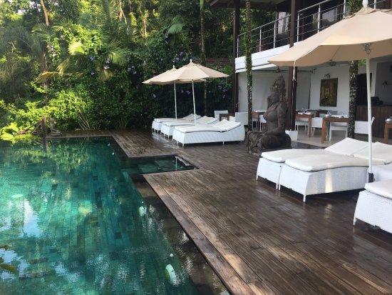 Oxygen Jungle Villas: Gorgeous infinity pool near the restaurant