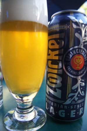 Clayton, MO: biere locale