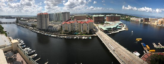Tampa Marriott Waterside Hotel & Marina: photo1.jpg