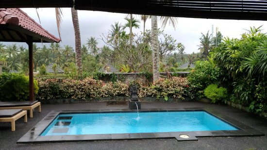 Bali Breeze Bungalows: Private pool for dip
