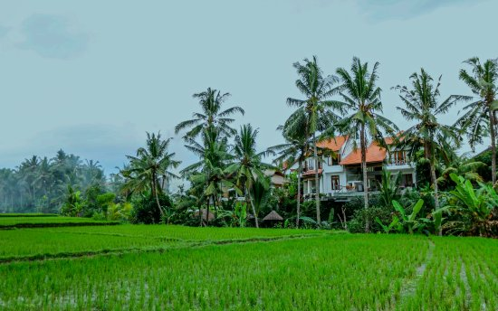 Villa Sancita: Peaceful setting with uninterrupted views, yet only 5 minutes from Ubud Centre!