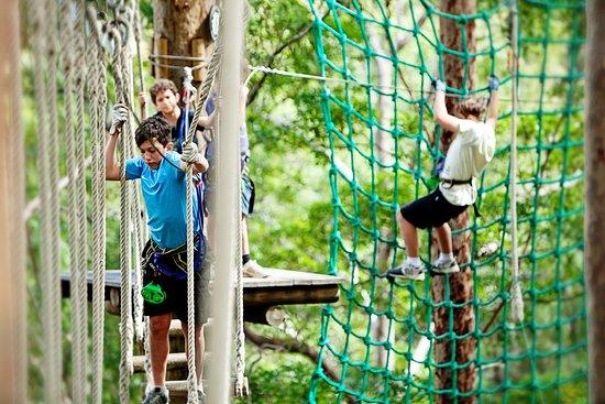 Thunderbird Park: TreeTop Challenge