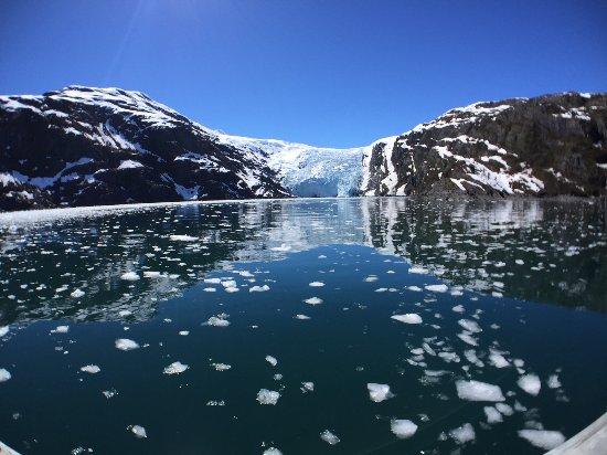 Whittier, AK : Brash ice in Blackstone Bay.