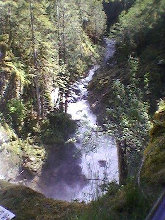 Nooksack Falls: Nooksack River below the Falls
