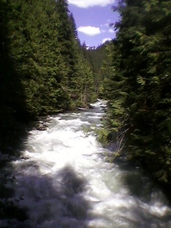 Nooksack River just above Nooksack Falls