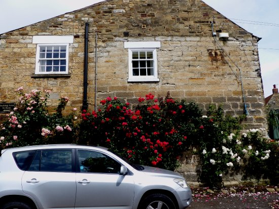 Kilburn, UK: Fantastic display of rambling roses on the pub roadside wall