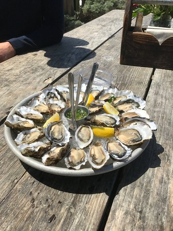 Marshall, Kaliforniya: great oysters - small but tasty