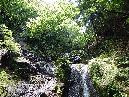 Kanto, Japan: 沢の風景