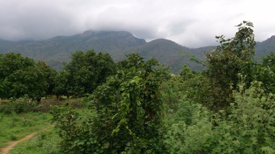 road to ayyanar falls in the w...