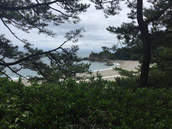 Katsurahama Beach: photo2.jpg
