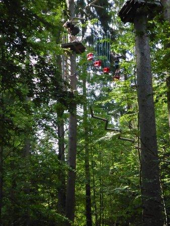 Gruenwald, Alemania: Hier dürfen sich nur Große trauen