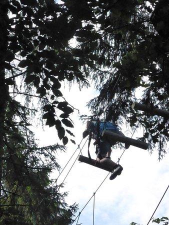 Gruenwald, Alemania: Luftiger Wackelweg zwischen den Baumwipfeln