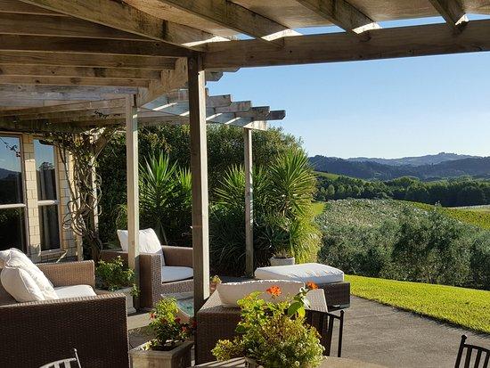 Warkworth, Nuova Zelanda: View over winery