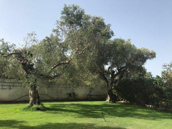 Acquarica di Lecce, Italie : photo2.jpg