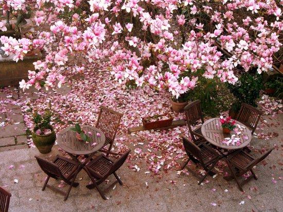 Costa Vella Hotel Photo