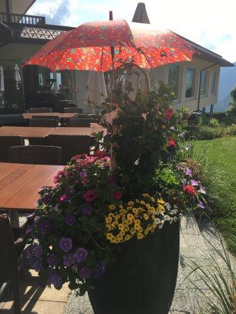 blumen auf der sonnen terrasse bild von alpinresort schillerkopf b rserberg tripadvisor. Black Bedroom Furniture Sets. Home Design Ideas