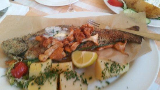 Gasthof Fischerstüberl: Forelle gebraten mit Pilzen
