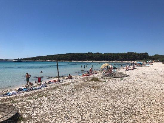 Dugi Island, Croazia: Saharun beach