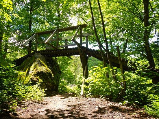 Saint-Raymond, Canada: Boreal MTB Trail start