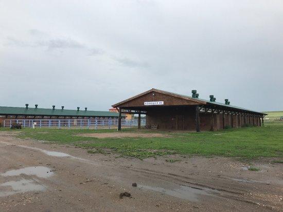 Sibirskoye Podvorye