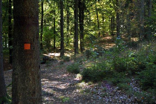 Larkesholm Hiking Trail