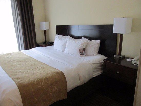 Comfort Suites Fort Wayne Picture