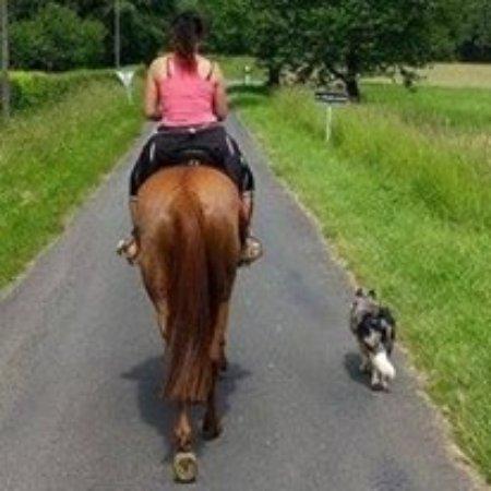 Arnac-Pompadour, France: moi ma chienne et ma jument en ballade
