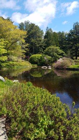 Northeast Harbor, ME: Gardens