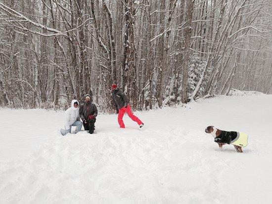Chatillon-sur-Cluses, فرنسا: Fresh snow