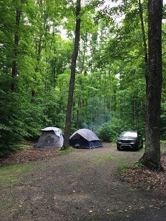 Wetmore, MI: Pic of our campsite