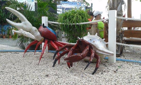 Provincie Puntarenas, Costa Rica: Decoración del restaurante
