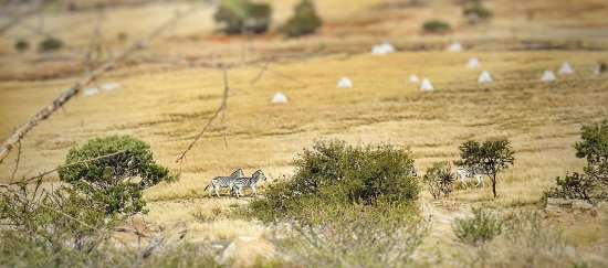 Isandlwana Battlefield Photo