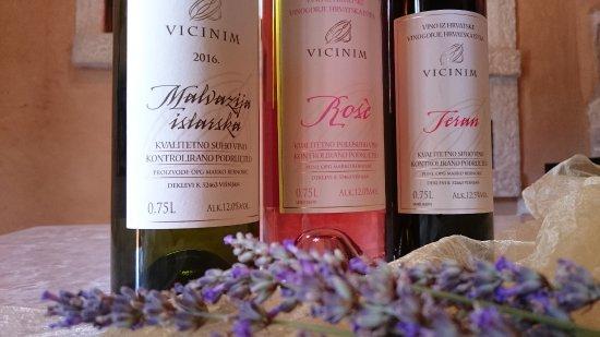 Sveti Petar u Sumi, Horvátország: Vicinim wines-Malvazija, Rose cabernet, Teran