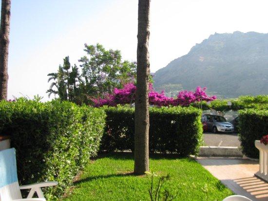Villa Gilda: giardino